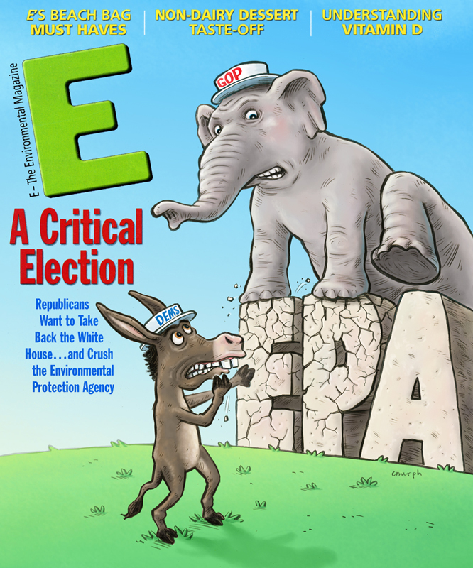 emag.cover2012.copy